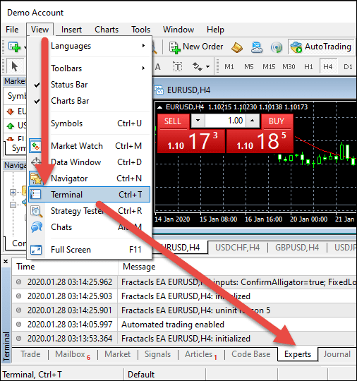 MetaTrader Terminal Window